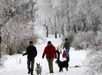 погода зимой в Украине