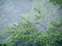 сильный июньский дождь