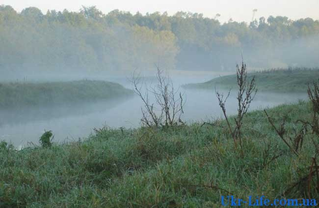 Утренний туман предвещает теплую погоду