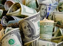 украинцы активно покупали американскую валюту